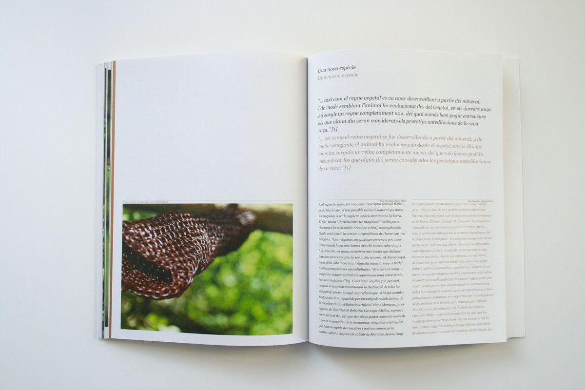 colmena_catalog10